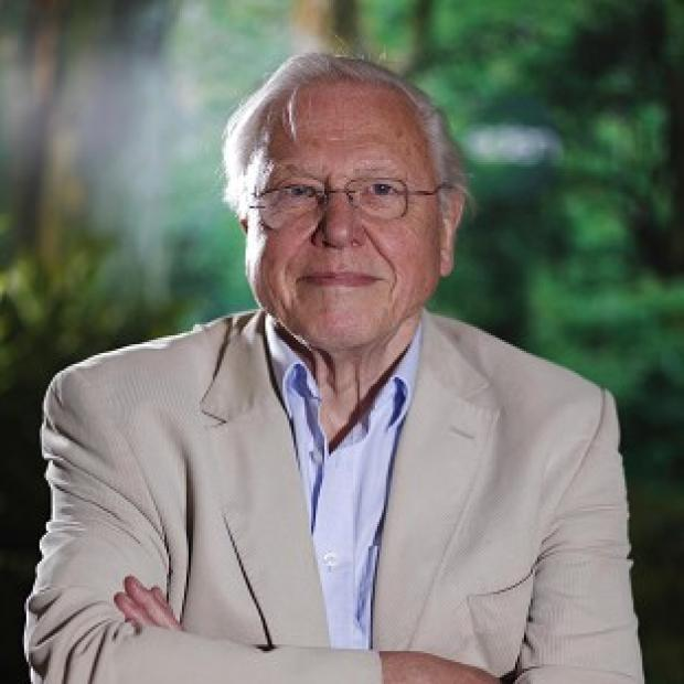 National treasure Sir David Attenborough has made his debut on Twitter