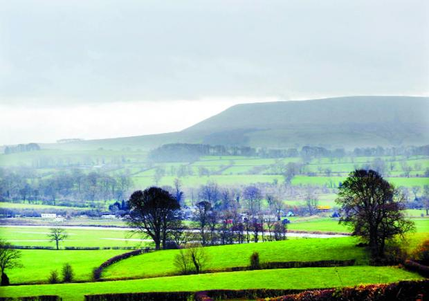 Plans to boost retail and help traders in Pendle