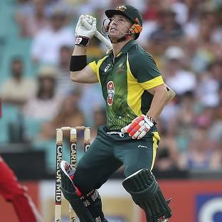 David Warner hit 71 and performed a stunning run out to help Australia beat England (AP)