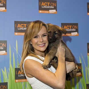Amanda Holden joked she might sneak a puppy home in her handbag