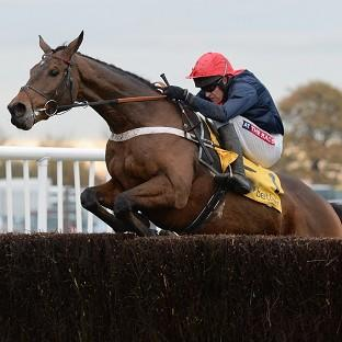 Bobs Worth will take on 13 rivals in the Gold Cup