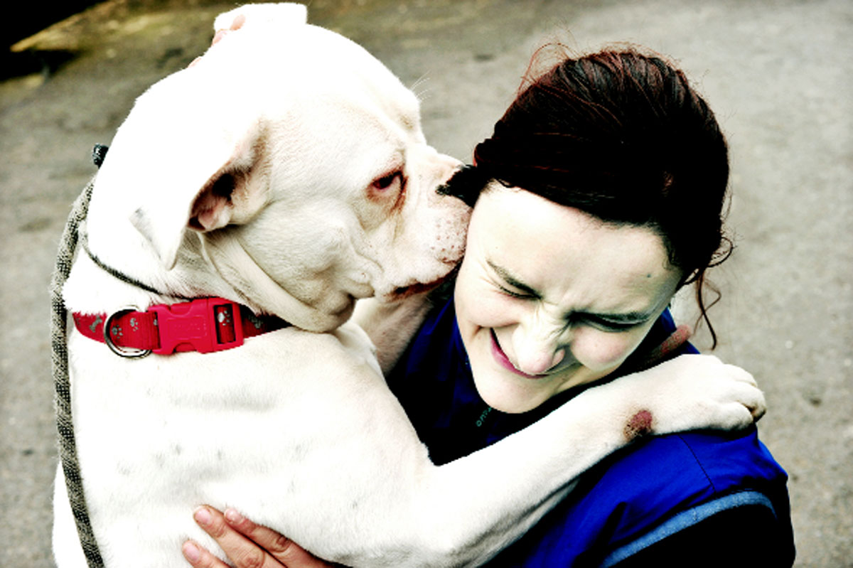 Willow the deaf Staffie whispers into Bleakholt worker Hannah Wayward's ear     Picture: JOHN MILLS