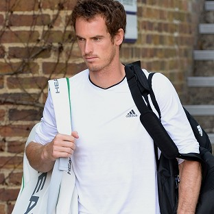 Andy Murray, pictured, is scheduled to play the second singles match against Andreas Seppi