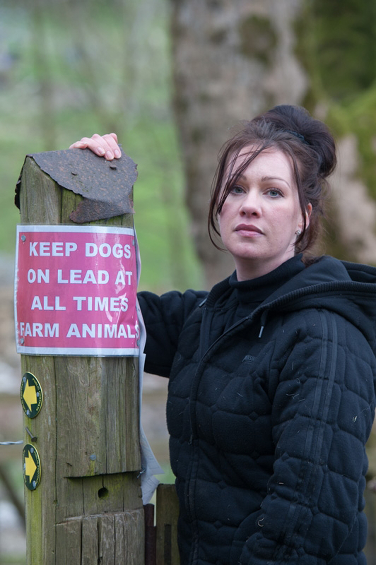 East Lancs farmer horrified after finding 'gruesomely' savaged sheep