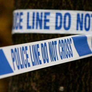 Police are investigating a disturbance which left two teenagers injured