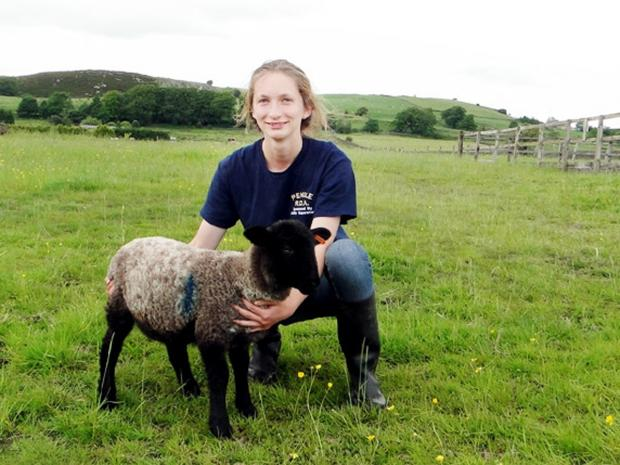 Burnley and Pendle Citizen: 'Gruesome' East Lancs sheep attacks condemned by farmers
