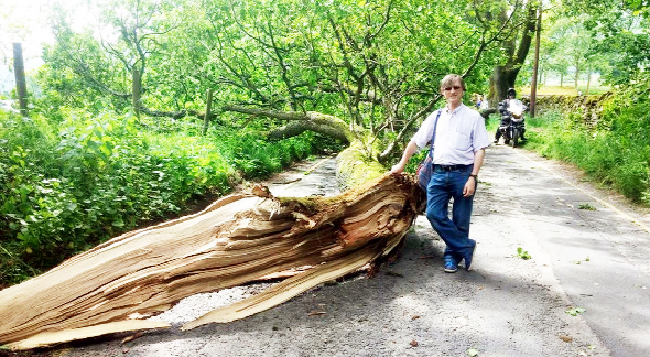 Lewis Walch and the fallen oak tree branch
